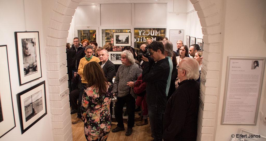 2016.01.18.-Artphoto-Galéria-Mucsy-Szilvia-kiállításmegnyitó