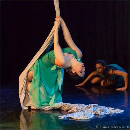 Cirkusz a táncban