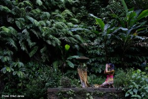 2016.07.06.-Bali-Erdei-szentély-a-Munduk-vízesésnél