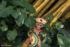 2016.07.089.-Bali-Ubud-Táncosnő-a-bambuszok-közt