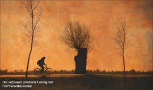 ole-suszkiewicz-denmark_evening-red