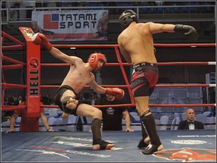 Budo- és küzdősportgála